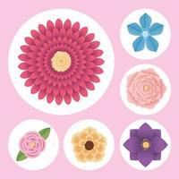 cute six flowers vector
