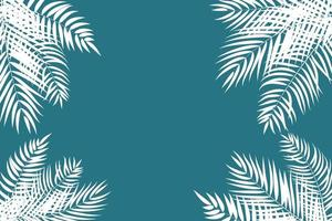 Beautiful Palm Tree Leaves Silhouette Background Vector Illustration