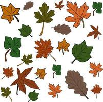 set of leaves perfect for backgground or wallpaper vector