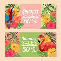 troical summer sale with macow and flamingo vector