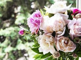 Beautiful pink peony bouquet in a vase. photo