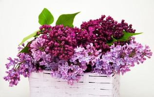 Lilac flowers in a basket photo