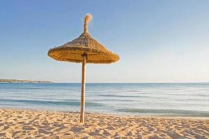 Sun umbrella on the golden beach in Bulgaria photo