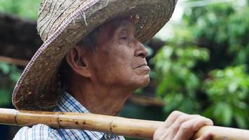 Close up of a delighted Asian old man standing in a garden and facing the sky Farmers are happy with the rain according to the season video