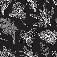 Wild grass seamless pattern. Field herbs and garden medical plants, useful seasonings. Hand-drawn vector illustration.