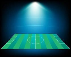 Illustration of a football field illuminated on a stadiumVector EPS 10 vector