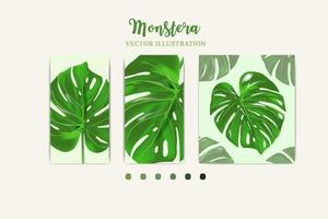 Monstera plant leaf from tropical forests crop in picture Can be used for greeting cards flyers invitations web design to everything vector