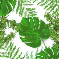 Group of plant leaf from tropical forests monstera fern pine leaf set in background Can be used for greeting cards flyers invitations web design to everything vector