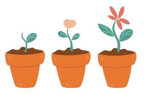 Process of flower growth Vector image of three stages of growth of a beautiful flower  in a brown pot Plant growing stages Harvest product offspring Growing process vector flat icon