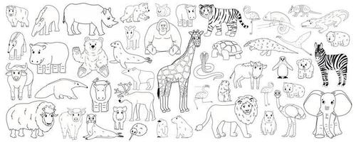 Set of outline cartoon isolated Savannah African American forest animals vector