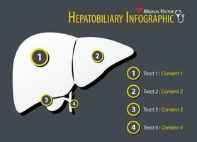 Hepatobiliary Infographic  Flat design vector