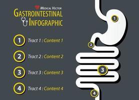 Gastrointestinal Infographic  Flat design vector