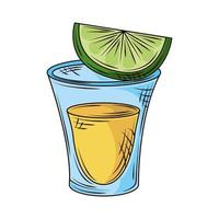tequila shot lime vector