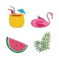 summer tropical set vector