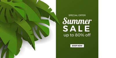 Summer sale offer banner promotion with banana and monstera tropical leaves with white and green background vector