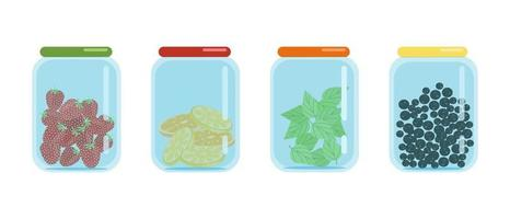 Glass jars closed with lids filled with dried slices of lemons and oranges black currants and strawberries dried fruit blanks vector illustration in flat style isolate cartoon