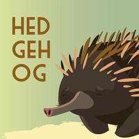 hedgehog australian animal wildlife native vector