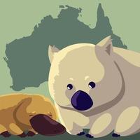 wombat y ornitorrinco continente australiano mapa animal fauna vector