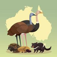 continente australiano mapa hábitat animales fauna y vida silvestre vector