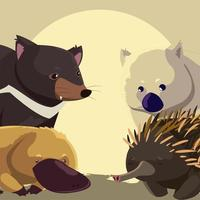 retrato animales australianos fauna equidna wombat ornitorrinco y diablo de tasmania vector