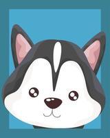 portrait of cute little dog siberian vector