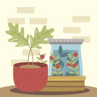 home garden potted plant and tomatoes in pot vector