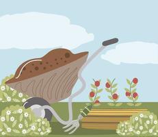 garden wheelbarrow soil plantation tomatoes and rake vector