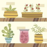 home garden shelf with potted plants succulent and tomatos plant vector