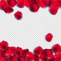 Abstract Natural Rose Petals Realistic Vector Illustration