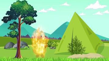 prendió fuego en la llanura verde cerca de la tienda video