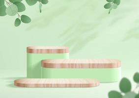 Natural podium with wood and eucalyptus leaves for product display vector