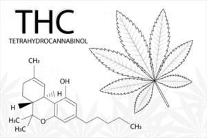 Cannabis leaf of Indica with formula tetrahydrocannabinol vector
