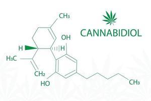 Cannabis leaf of Sativa with formula cannabidiol vector