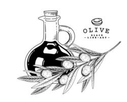 Branch of apple with fruits and Jar of olive oil Hand drawn Sketch Botanical illustrations decorative set vector