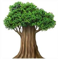 Realistic fairy old oak tree in vector