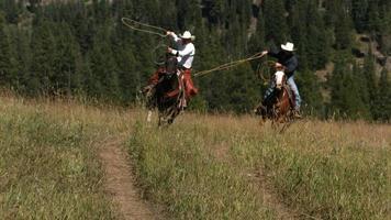 Dos vaqueros montando a caballo balanceando lazos, moiton lento video