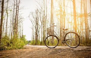 hermosa bicicleta vintage foto