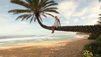 Frau sitzt auf Palme mit Blick auf tropischen Strand video