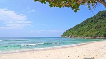 tropischer Ozean mit blauem Himmel video