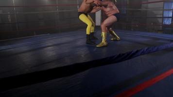hommes masqués luttent dans le ring video
