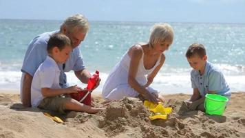 grootouders spelen met kleinkinderen op het strand video