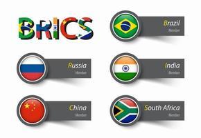 asociación brics de 5 países vector