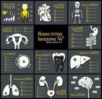 Set of human systems infographics  Cardiovascular  Skeletal  Reproductive  Gastrointestinal  Eye  Dental  Hepatobiliary  Respiratory  Genitourinary  Neurological vector