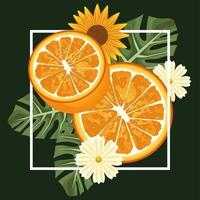 floral background with oranges and flowers in square frame vector