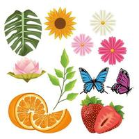 bundle of flowers and fruits with butterflies vector