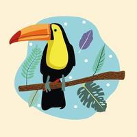 beautiful wild toucan bird scene vector