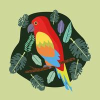 beautiful parrot bird exotic scene vector