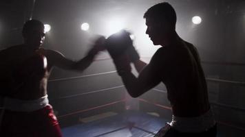 boxeurs se battent dans un ring de boxe video