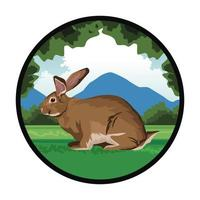 cute rabbit in the landscape vector