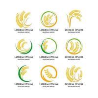 wheat rice logo template vector icon